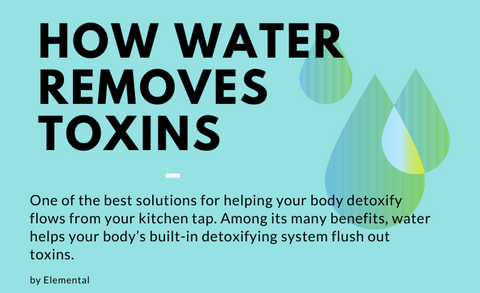How Water Removes Toxins
