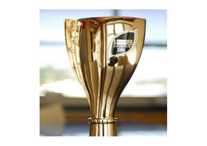 Telecom Virtual Rugby -  AirNZ Cup competition trophy   - Jens Hansen