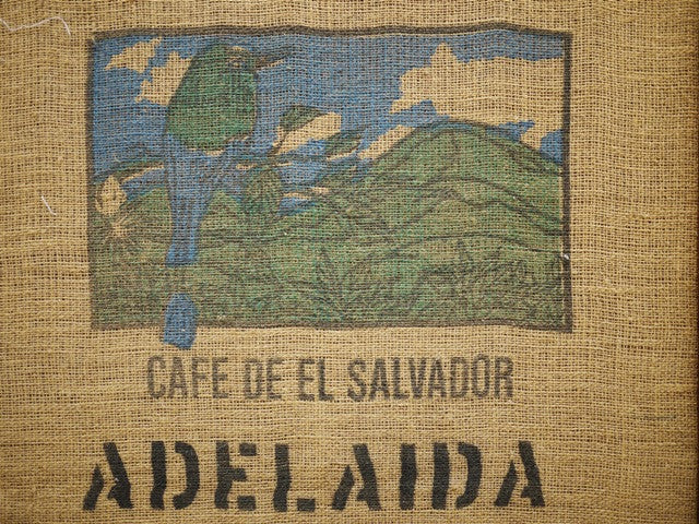 Organic El Salvador fresh roast craft coffee High Rise Coffee Roasters Colorado Springs, CO
