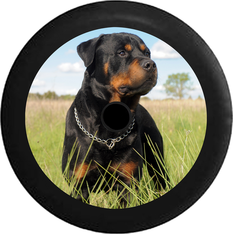Jeep Wrangler JL Backup Camera Loyal Rottweiler in a Field Black 'n Tan Jeep Camper Spare Tire Cover 35 inch R101