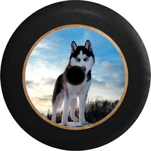 Jeep Wrangler JL Backup Camera Blue Eyed Husky American Dog K9 Wolf Jeep Camper Spare Tire Cover 35 inch R301