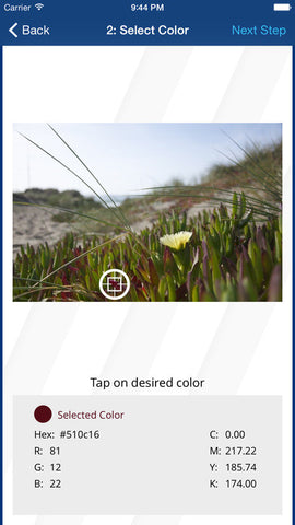 Rowmark Color Snap Match app screen 1