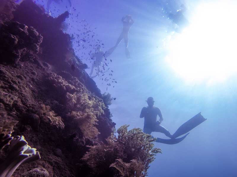 "ic:Freediving traffic on the ""Japanese"" wreck"