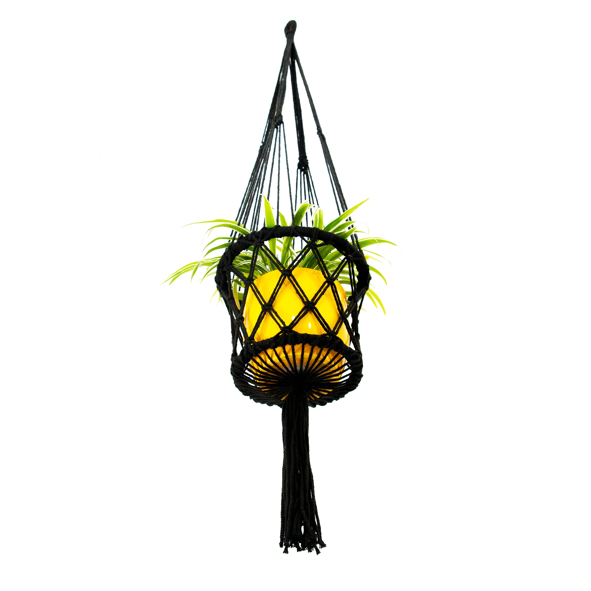 Bottom view of Black Macrame Plant Holder