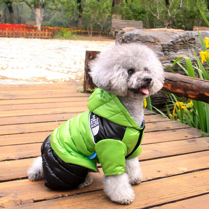 the north face dog coat
