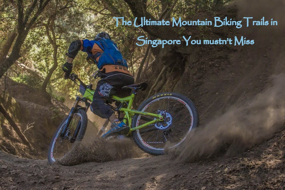 The Ultimate Mountain Biking Trails in Singapore You mustn't Miss