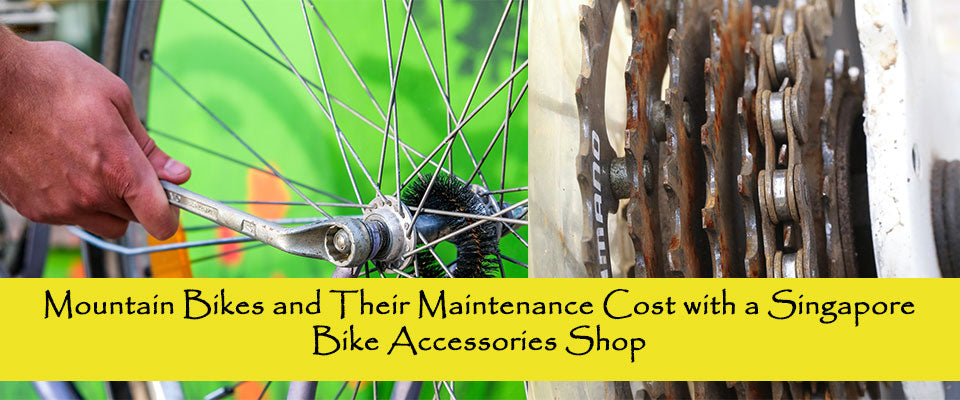 Mountain Bikes and Their Maintenance Cost with a Singapore Bike Accessories Shop