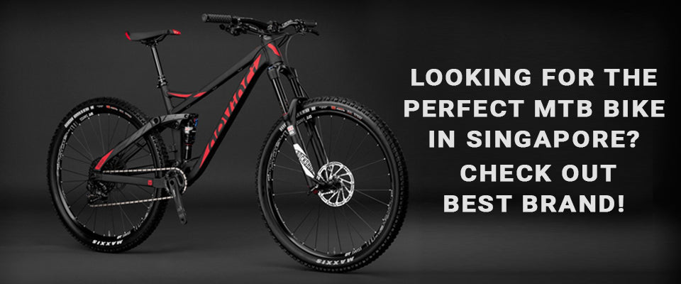 Looking for the Perfect mtb bike in Singapore? Check out Best Brand!