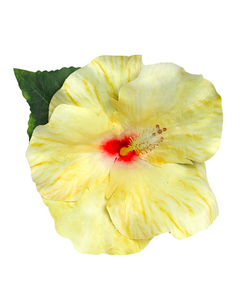 Large Hibiscus Yellow Hair Flower By Lady Luck's Boutique