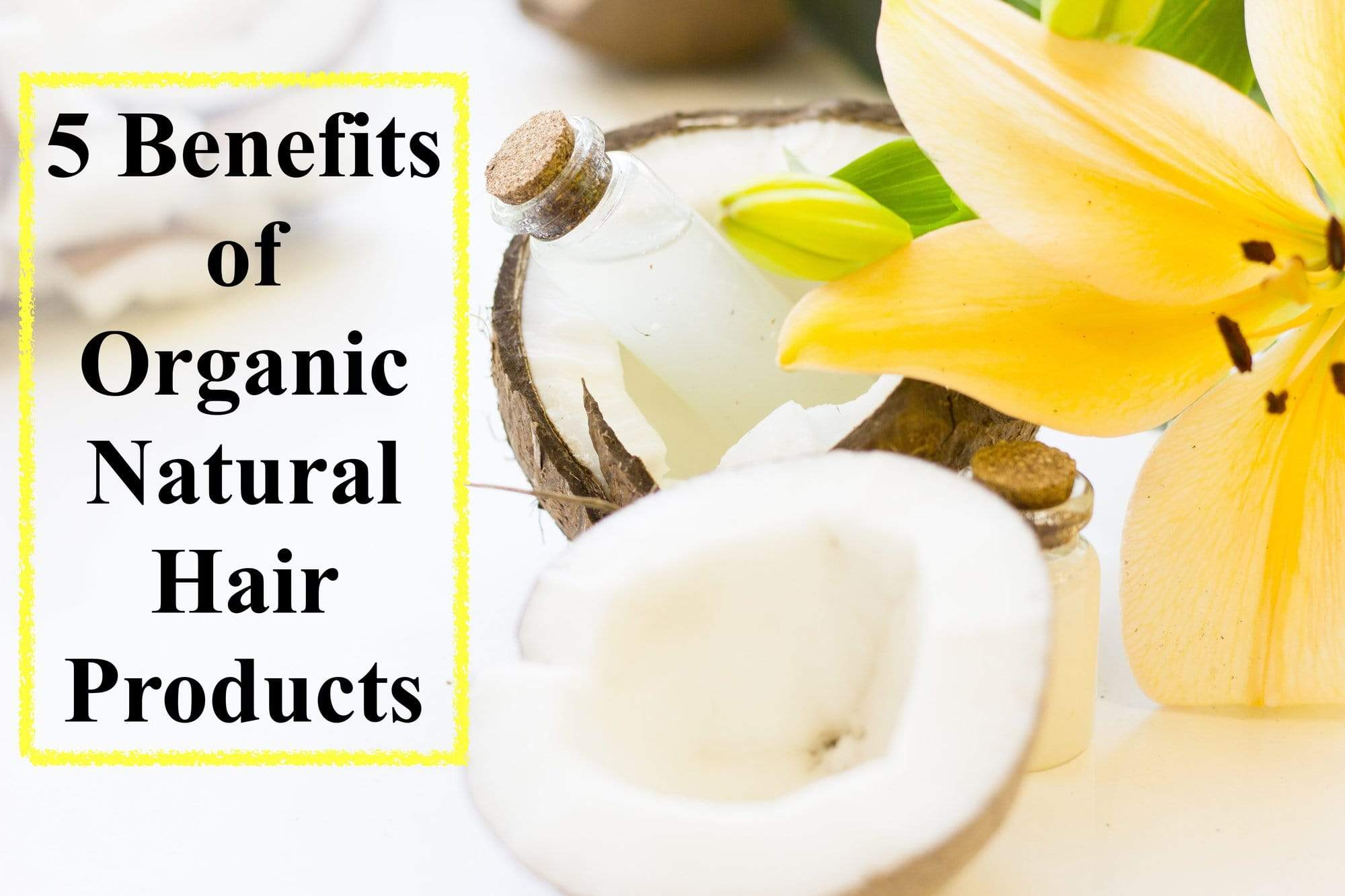 The Hair-Raising Facts: 5 Benefits of Organic, Natural Hair Products