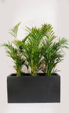 THE ARCHIVE - Fiberstone Planter Box (Matt Black)
