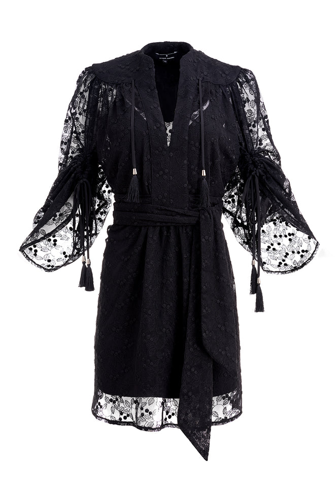 Karlie Embroidered Lace Mini Dress