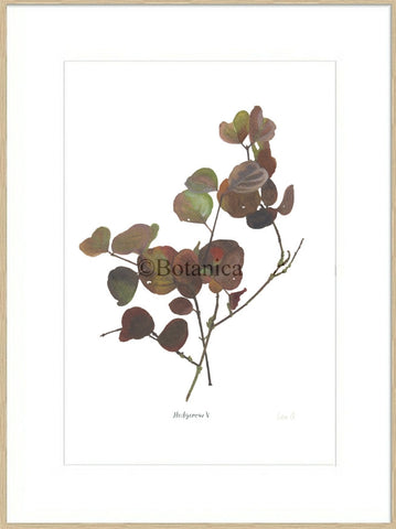 Hedgerow V : Signed, Mounted Print