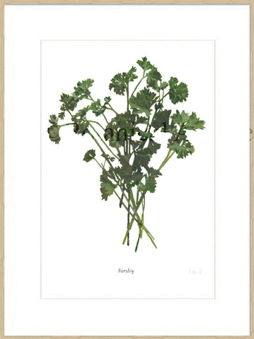 Parsley : Signed, Mounted Print