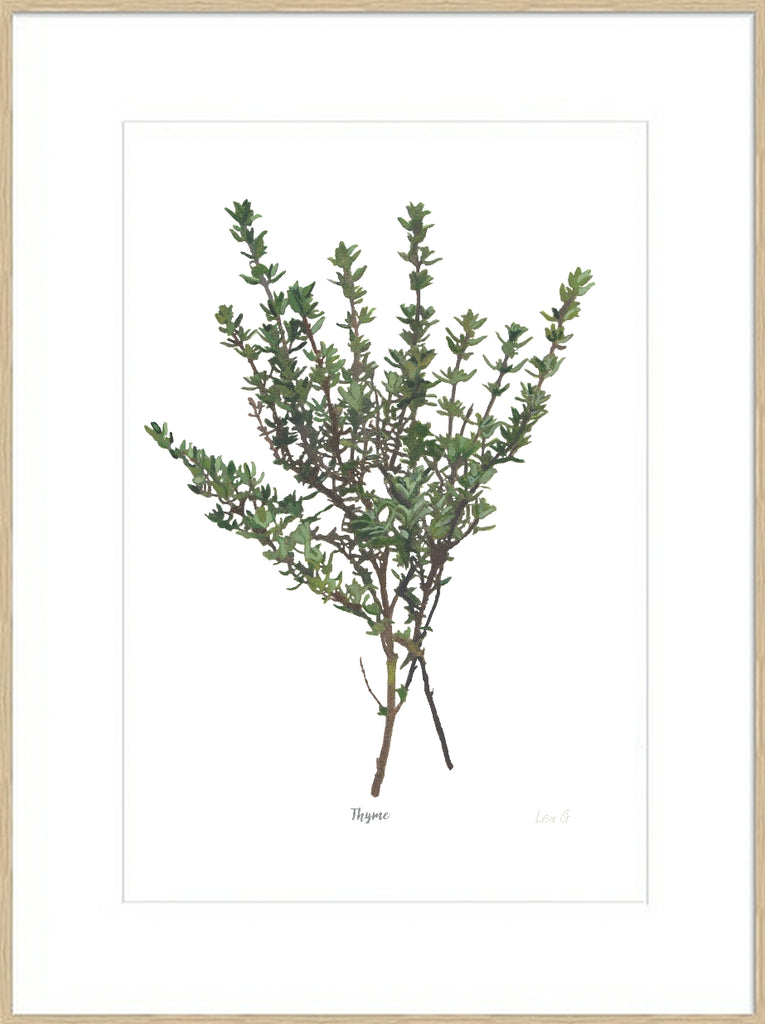 Thyme : Signed, Mounted Print
