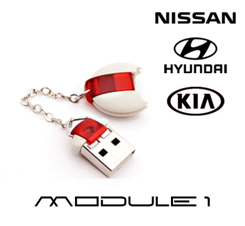 DiagCode - Hyundai/ KIA/ Nissan( USB - security dongle included)