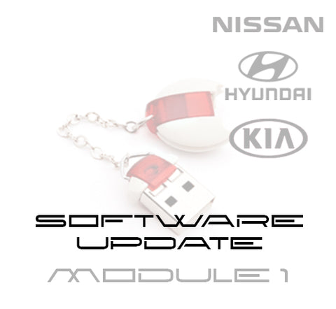 DiagCode - Hyundai/ KIA/ Nissan - software update