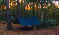 Beech Estate Woodland Hammock Camping Site