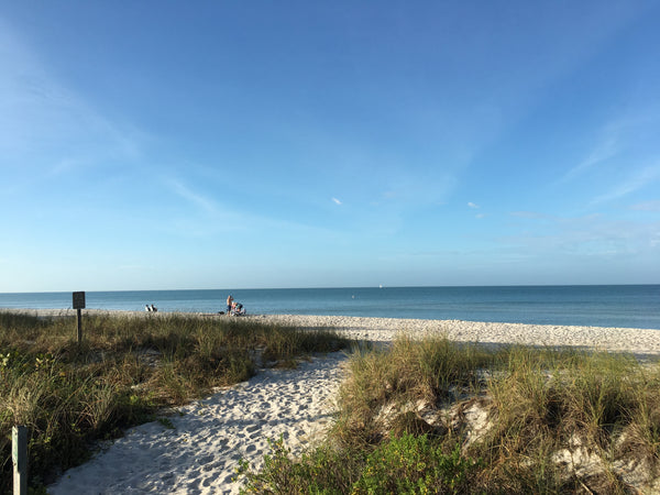 Miami to Marco Island and Naples Day Trip for 4-6 Persons