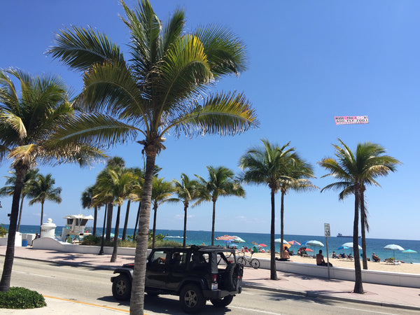 Zone O - Day Trip from Marco Island or Naples to Fort Lauderdale Beach