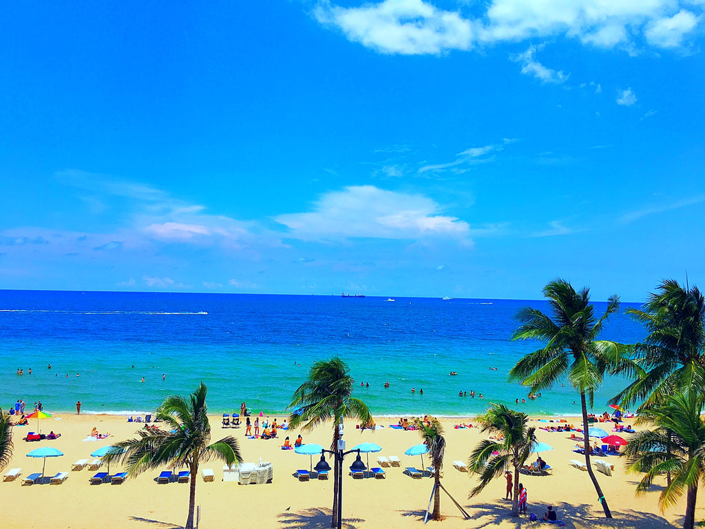 Visit Downtown Fort Lauderdale for a Day Trip