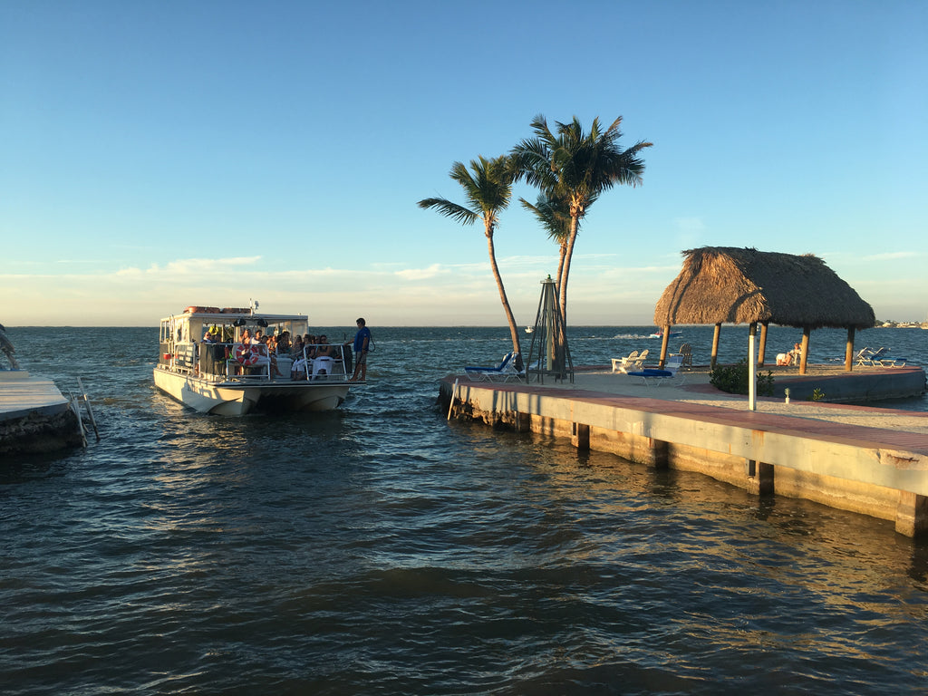 Visit the Keys for an All Day Diving Trip