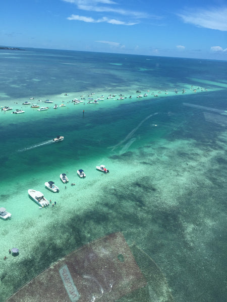 Our Key West Day Trip for 4-6 Persons
