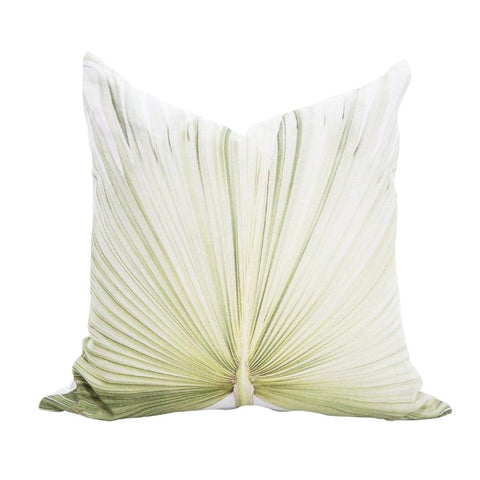 Scatter Cushion - Fan Palm - Joba Collection: Alternate View #1