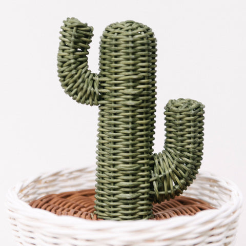 Rattan Cactus Pot: Alternate View #3