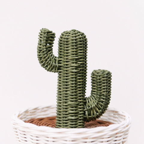 Rattan Cactus Pot: Alternate View #2