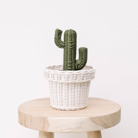 Rattan Cactus Pot: Alternate View #4