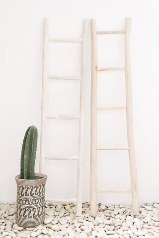Wooden Ladder Whitewash: Alternate View #5
