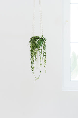 Macrame Planter: Alternate View #3