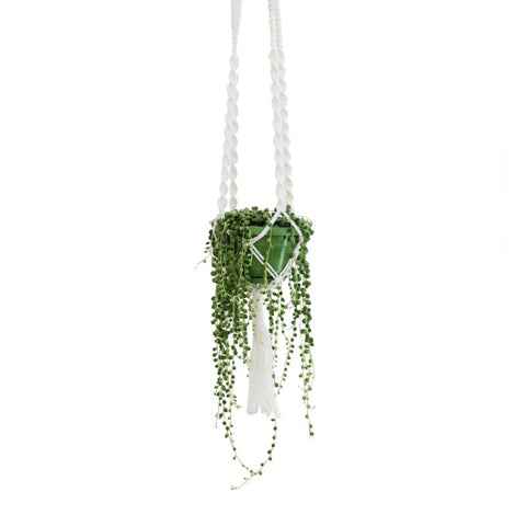 Macrame Planter: Alternate View #1