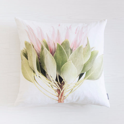 Scatter Cushion - Protea - Joba Collection: Alternate View #1