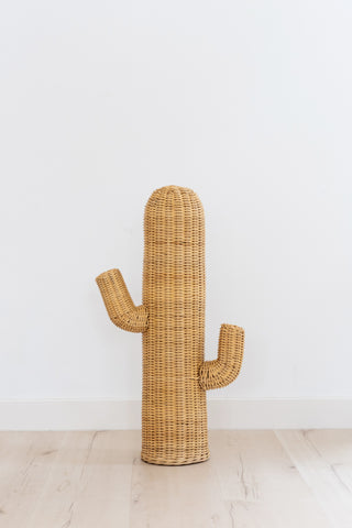Rattan Cactus: Alternate View #5