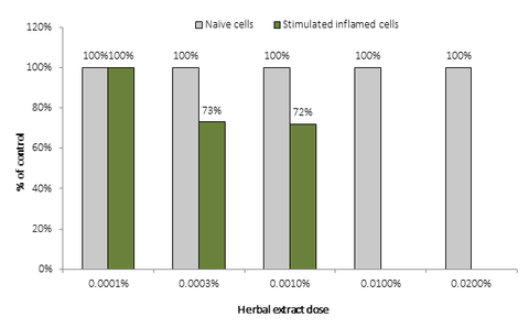Figure 12. Effect of herbal extract on viability of human keratinocytes (MTT assay).