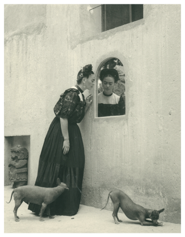 Frida Kahlo Looking in a Mirror, with Two Dogs Postcard