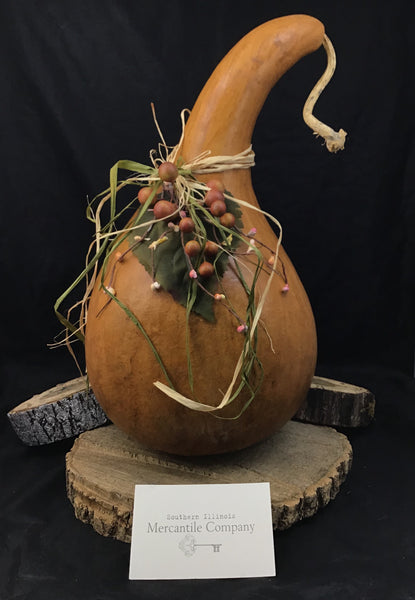 Medium/Large Decorative Gourds