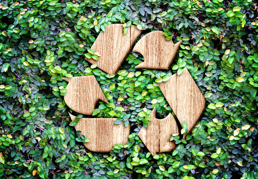 What Are The Benefits Of Purchasing Biodegradable Products?