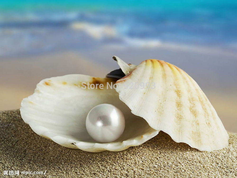 Beautiful Chocolate shell pearl yellow gold jewelery set AAA style Fine Noble real Natural free shipping