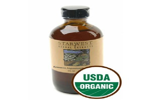 Echinacea Angustifolia & Purpurea Extract Organic - SustainTheFuture.us - The Natural and Organic Way of Life