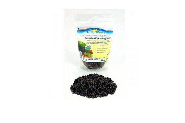 Green Lentil Sprouting Seed (4oz zipper pack) Certified Organic - SustainTheFuture.us - The Natural and Organic Way of Life