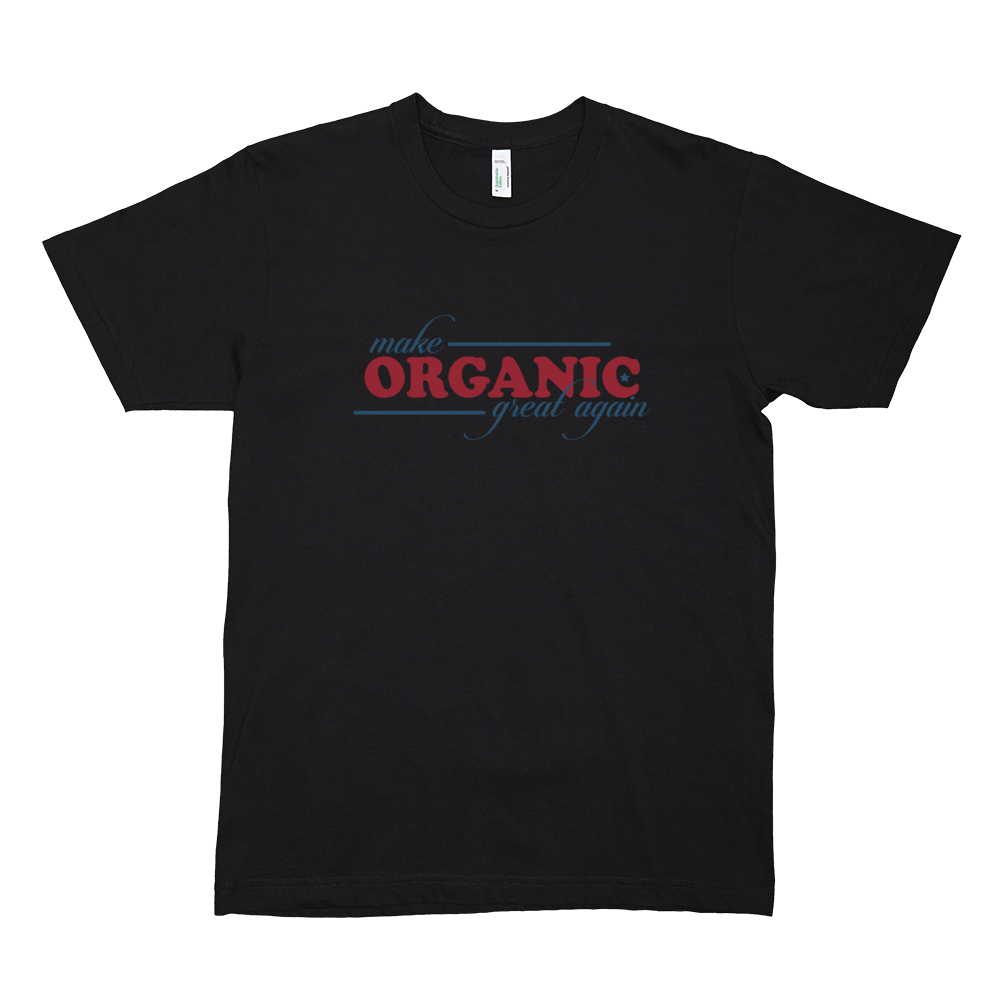 Men's short sleeve t-shirt, • 100% organic fine jersey • Slim fit • Double stitched • Made in the USA, sweatshop free