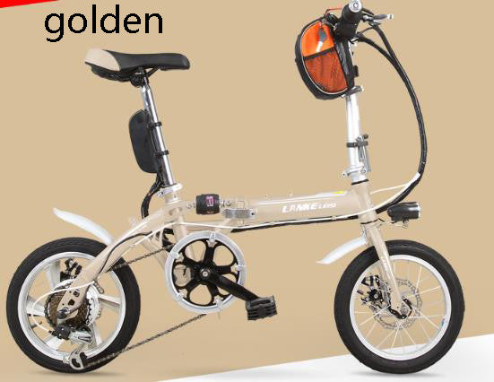 Electric bicycle/36V/10A-15A/250W/folding Super light electric bike luxury electric cars long-distance running king/tb310901 - SustainTheFuture.us - The Natural and Organic Way of Life