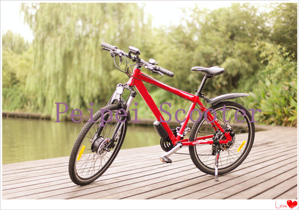 luxury type high quality aluminium alloy suspension electric bicycle (pseb-45) - SustainTheFuture.us - The Natural and Organic Way of Life