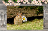 Chipmunk Love