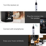 CrossBeats Bluetooth Mini Receiver with 3.5mm Aux Adapter (Silver)-CrossBeats-Helmetdon