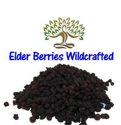 Whole ORGANIC Elderberries (Sambucus nigra) (Black-berried European elder, Boor tree, European elder, German Elder)