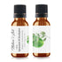 Spearmint and Eucalyptus Fragrance Oil | Fragrance Oil - Spearmint and Eucalyptus 10ml/.33oz